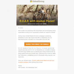 GlobalGiving Email Marketing