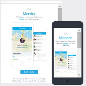 Email Campaign Monitor